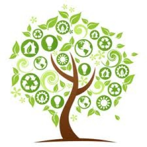 Adopting a Form for Your Socially Responsible For Profit Enterprise