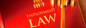 The Third Circuit Addresses Employment Discrimination Cases